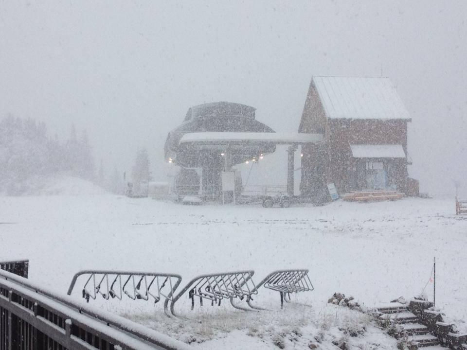 La Ninja Snow dump - GO Heli & Cat Skiing