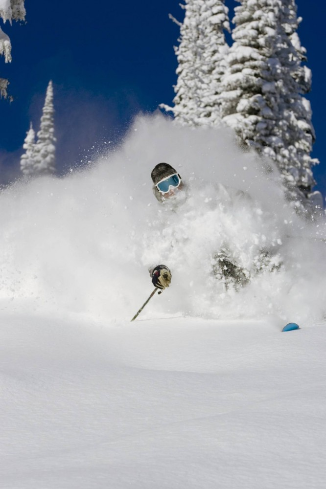 stock image for powder skiing heli ski